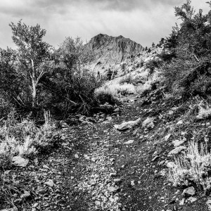 Ansel Adams Wilderness.Thousand Island Lakes Trail.7.15